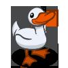 Pekin Duck 北京鴨