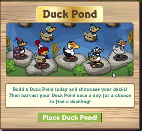 FarmVille, Duck Pond