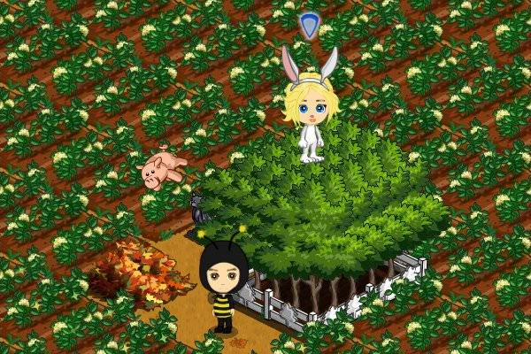 FarmVille 101110