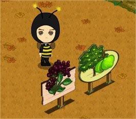 FarmVille 101112