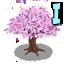 Kissing tree 1