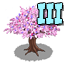 Kissing tree 3