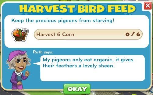Harvest Bird Feed