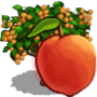 (Peach Tree).png