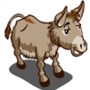 Mule 騾