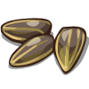 sunflower_seeds(Sunflower Seeds).png