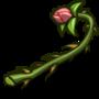 Pink Rose Thorn