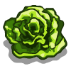 lettuce_bloom.png