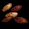 lettuce_seeds.png