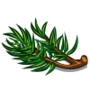 (Pine Needles).png