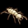 (Termite).png