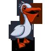 Pelican 鵜鶘
