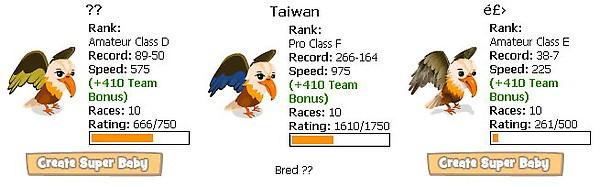 zoo world, race