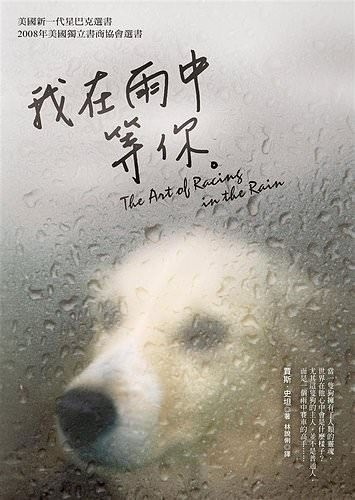 The Art of Racing in the Rain 我在雨中等你