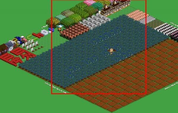 FV農場全景圖-1