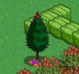 FV聖誕更新-4