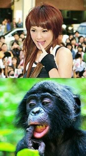 流行美女表情4