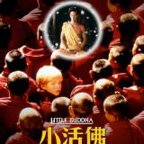 Movie, Little Buddha(義大利.法國.列支敦斯登公國.英國) / 小活佛(台), 電影海報, 台灣