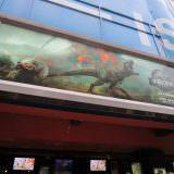 Movie, Jurassic World: Fallen Kingdom(美國) / 侏羅紀世界:殞落國度(台) / 侏罗纪世界2(中) / 侏羅紀世界:迷失國度(港), 廣告看板, 日新威秀