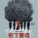 Movie, Undir trénu(冰島.丹麥.波蘭.德國, 2017) / 樹下驚魂(台) / 樹大招瘋(港) / Under the Tree(英文), 電影海報, 台灣