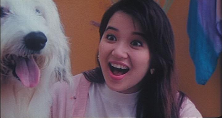 Movie, 開心鬼上錯身(香港, 1991) / 開心鬼上錯身(台) / Happy Ghost V(英文)
