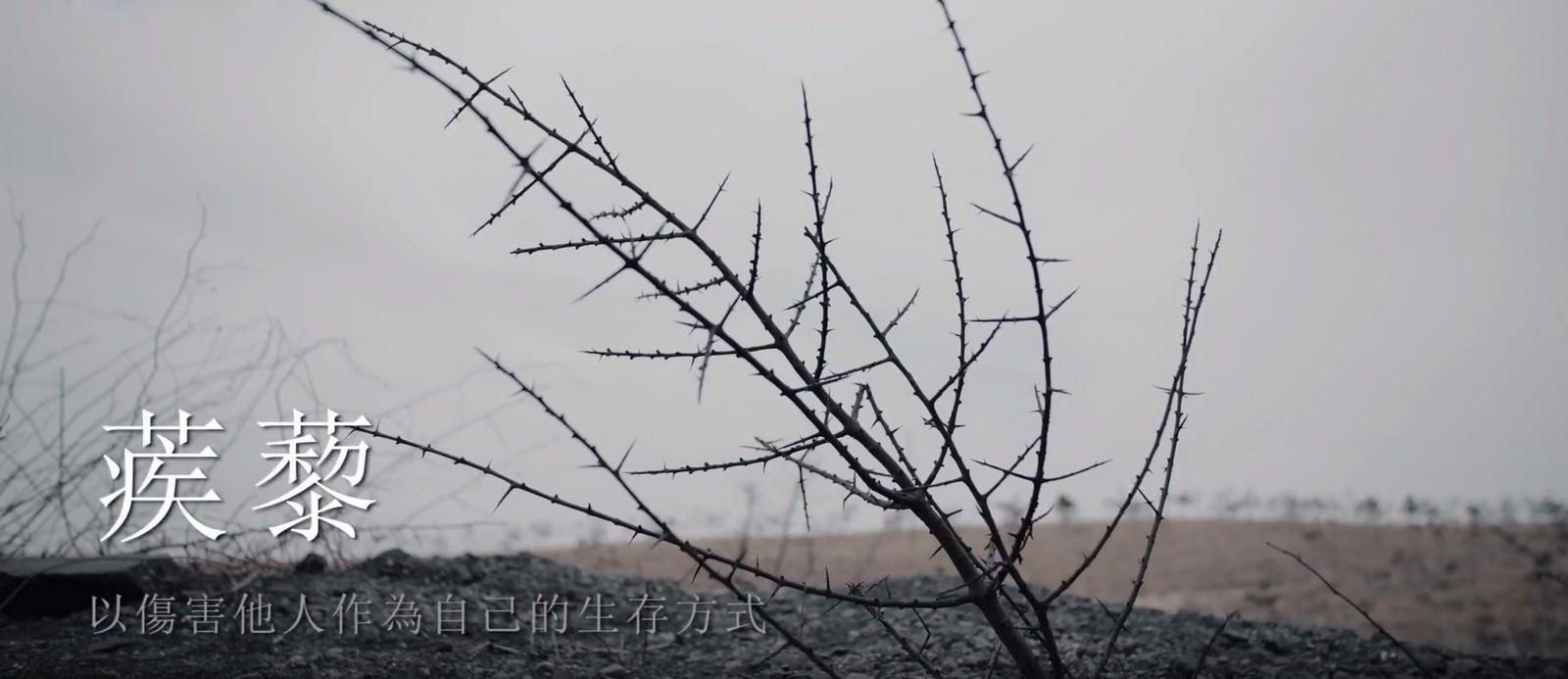 Movie, 老兽(中國, 2017) / 老獸(台灣) / Old Beast(英文), 電影劇照