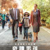 Movie, Wonder(美國, 2017年) / 奇蹟男孩(台灣.香港) / 奇迹男孩(中國), 電影海報, 台灣