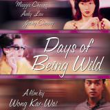 Movie, 阿飛正傳(香港, 1990) / 阿飛正傳(台灣) / 阿飞正传(中國) / Days of Being Wild(英文), 電影海報, 美國