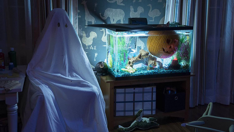 Movie, Halloween(美國, 2018年) / 月光光新慌慌(台灣) / 月光光心慌慌(香港), 電影劇照