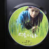 Movie, 太陽的孩子(台灣, 2015年) / Wawa No Cidal(英文), 電影DVD
