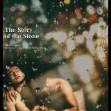 Movie, 紅樓夢(台灣, 2018年) / The Story of the Stone(英文), 電影海報, 台灣