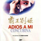 Movie, 霸王别姬(中國, 1993年) / 霸王別姬(台灣) / Farewell My Concubine(英文), 電影海報, 坎城影展