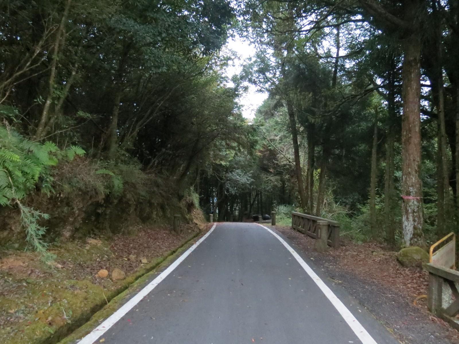 阿里山林業鐵路(森林小火車), 小笠原山
