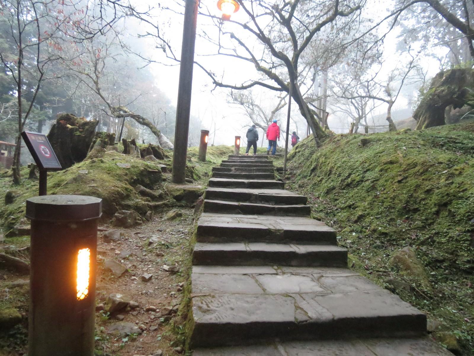 阿里山國家風景區, 步道