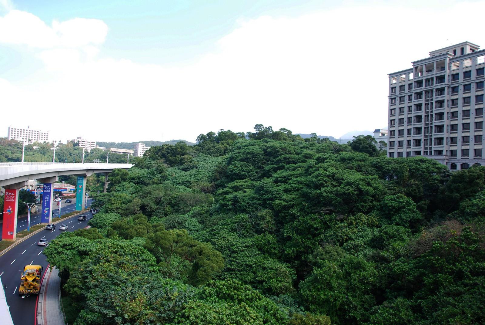 淡海輕軌綠山線, 輕軌竿蓁林站, 周邊環境