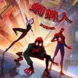 Movie, Spider-Man: Into the Spider-Verse(美國, 2018年) / 蜘蛛人:新宇宙(台灣) / 蜘蛛侠:平行宇宙(中國) / 蜘蛛俠:跳入蜘蛛宇宙(香港), 電影海報, 台灣