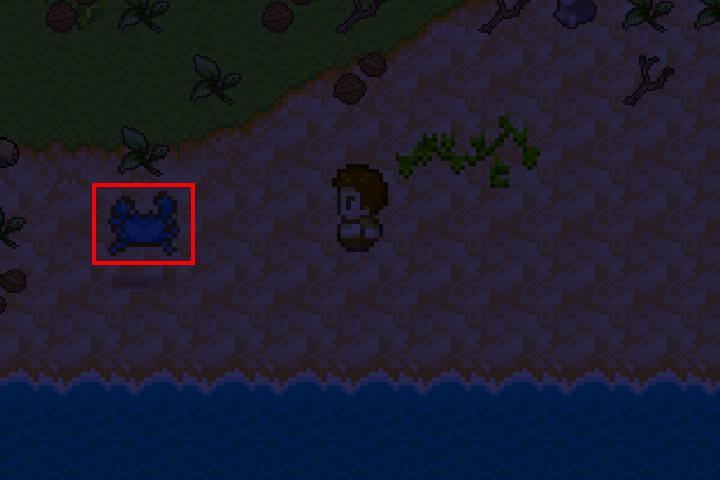 手機遊戲, 無人島大冒險1, 稀有物品