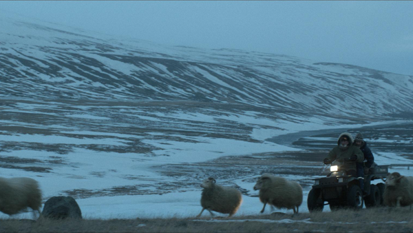 羊男的冰島冒險02