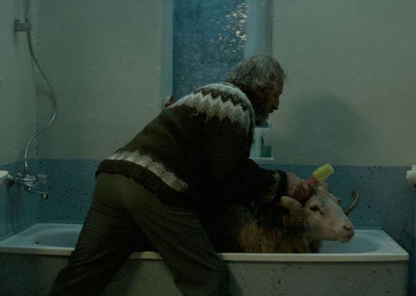 羊男的冰島冒險03