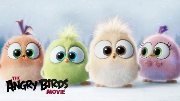The Angry Birds Movie04