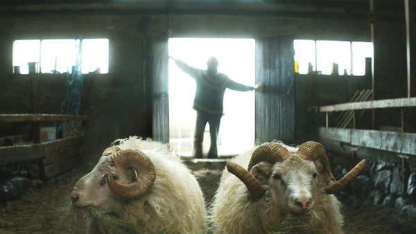 羊男的冰島冒險04