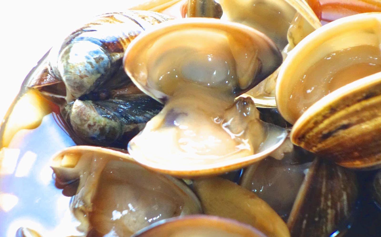 「 3 分鐘教你用冷凍法學會鮮醃蛤蜊」簡單小技巧,讓蛤蜊更肥美鮮甜!