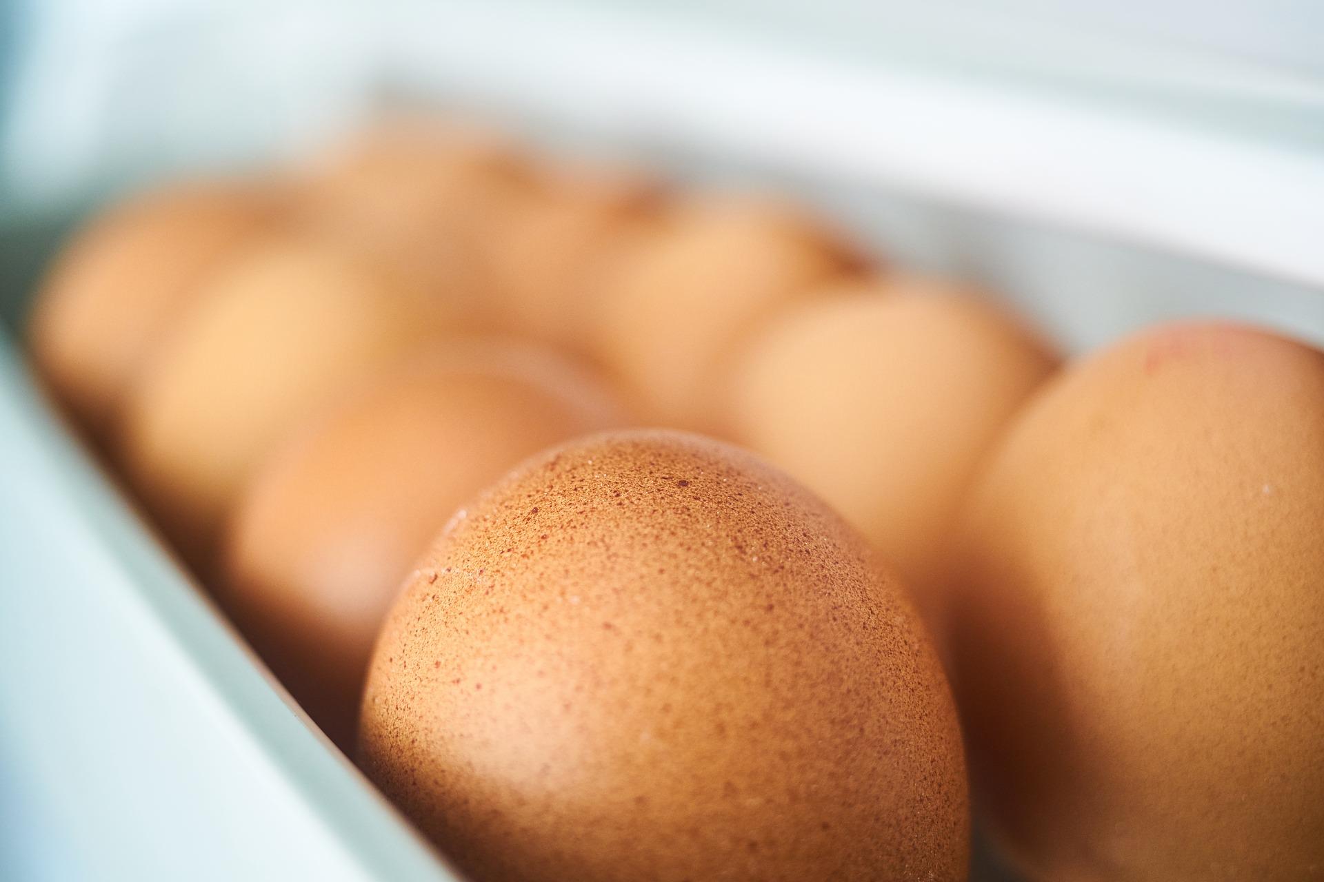 「原來這幾種蔬果不要放冰箱!」一張圖教你,如何收納冰箱食物!