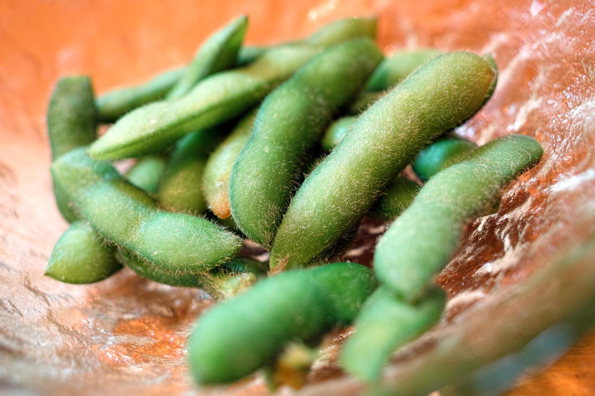 「水煮毛豆有什麼訣竅?」教你這幾招,保證讓毛豆顏色更翠綠漂亮!