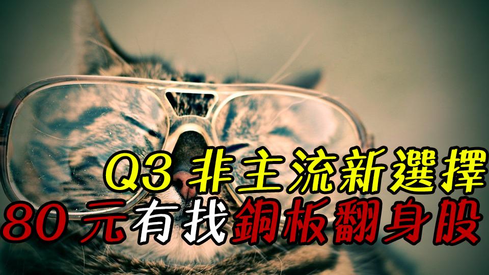 【08/19 貓奴看台股】Q3 非主流新選擇!25 檔 80 元有找『銅板翻身股』,每 1 檔 上半年獲利賺贏去年!