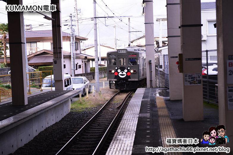 DSC_6193.JPG