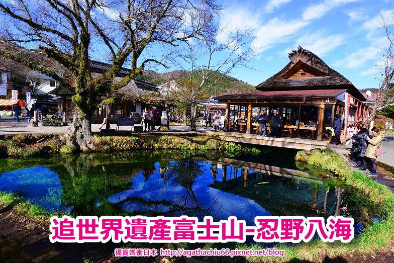 [東京靜岡山梨自駕/巴士] 忍野八海~追世界遺產富士山景點