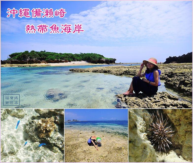 page 沖繩201706 備瀨崎3.jpg