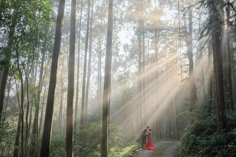【婚紗】C'EST BON WEDDINGS金紗夢婚禮 精修全圖 台北自助包套(下篇)