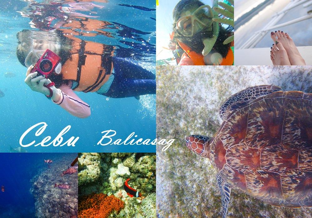 宿霧薄荷島Balicasag島大斷層 跳島浮潛 賞海豚看尼莫和海龜